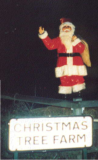 Father Christmas at Christmas tree farm, Chesham near London
